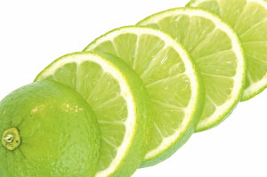 lime slices macro